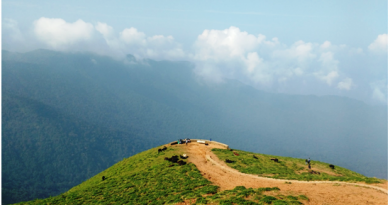 Coorg Adventure View Points Bike Ride Blog Travel Karnataka Places Road Thrill Bengaluru 12